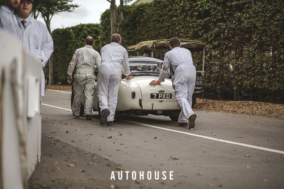 GOODWOOD REVIVAL 2015 (391 of 687)