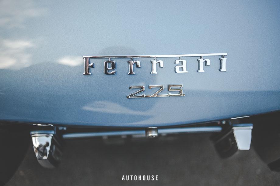 Ferrari 275 (11 of 64)