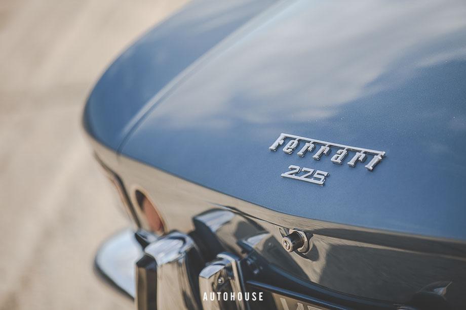 Ferrari 275 (31 of 64)