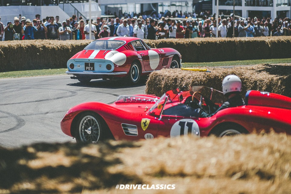 FOS 2017 (211 of 305)