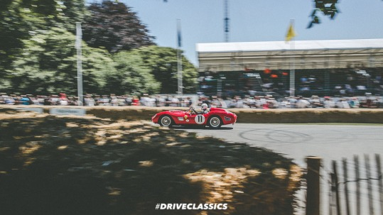 FOS 2017 (223 of 305)