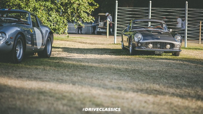 FOS 2017 (302 of 305)