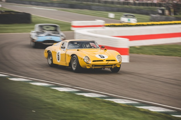 Goodwood Members Meeting 2019 (201 of 309)