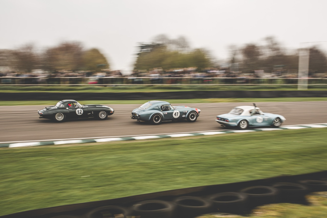 Goodwood Members Meeting 2019 (195 of 309)